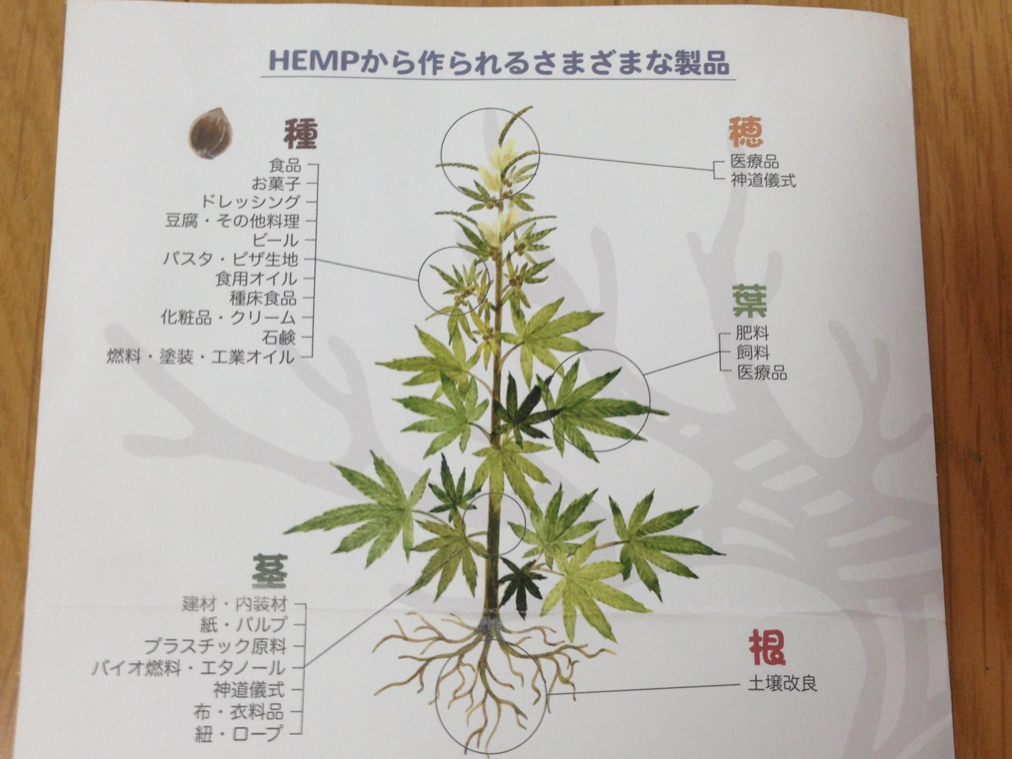HEMP Oromina