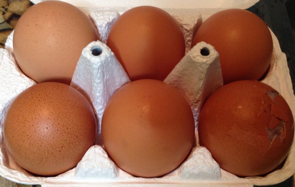 秋川牧園 卵